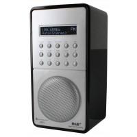 Soundmaster DAB100SW
